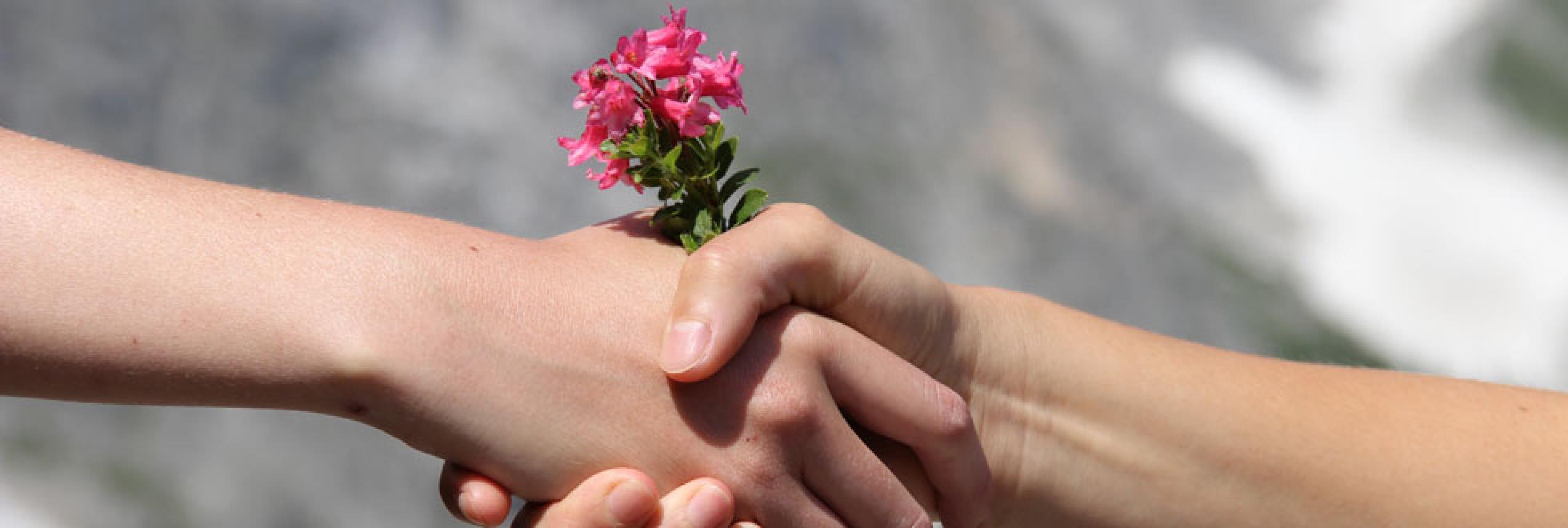 Handschlag der Naturfreunde